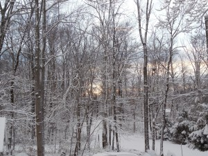 Morning on a snowy day
